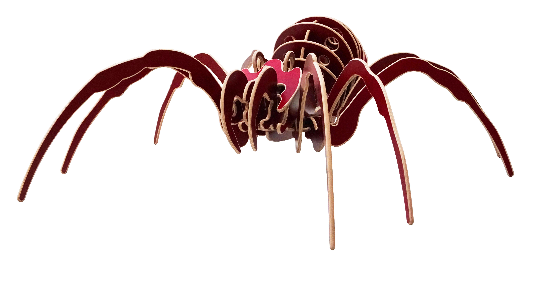 Araignée 3D géant